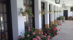 Hotel Finca Las Beatas - 3 Star #Hotel - $101 - #Hotels #Spain #Villahermosa http://www.justigo.club/hotels/spain/villahermosa/finca-las-beatas_29242.html