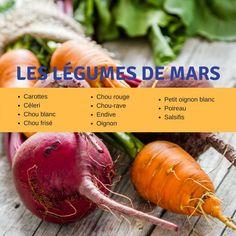 Découvrez les légumes à consommer au mois de mars, et nos meilleures recettes. Chou Rave, Batch Cooking, Health And Wellness, Carrots, Healthy Recipes, Vegetables, Bujo, Tips, Food