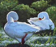 "Daily Paintworks - ""Preening"" - Original Fine Art for Sale - © Ande Hall"