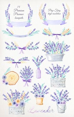Watercolor Lavender Design Pack by LarysaZabrotskaya on Creative Market - Modern Plants With Pink Flowers, Lavender Flowers, Purple Wildflowers, Clip Art, Flower Clipart, Blog Design, Creative Design, Journal Stickers, Floral Bouquets