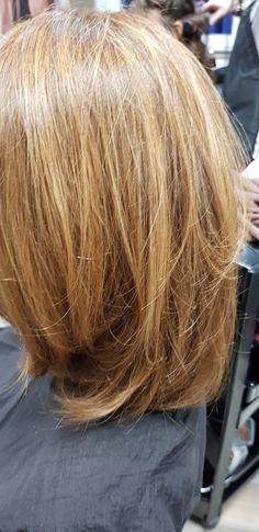 40 Best Blond Clair Cendré Images Ash Hair Coloring Hair