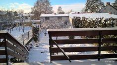 iw-od-nowa: Leśny śnieżny spacer