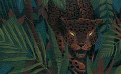 Juan Palomino y Ana Paula Ojeda nos acercan a los mitos mesoamericanos con 'Jaguar, corazón de la montaña', publicado por Tecolote y Conaculta.