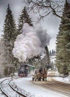 Romania in winter. Bucovina