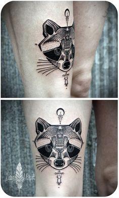 raccoon | David Hale