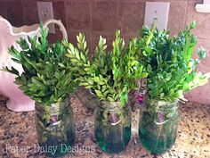 Paper Daisy Designs: Preserving Boxwood: How to and a Challenge