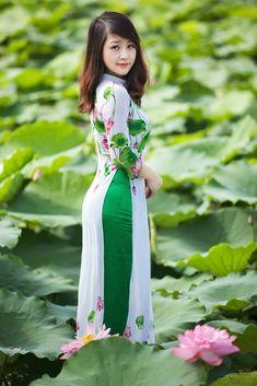 So könnte meine kleine Hoa Nhài ausgesehen haben ...