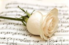 www.TributeCode.com Honor and remember your departed loved ones. http://www.tributecode.com/music-and-songs-for-grief/