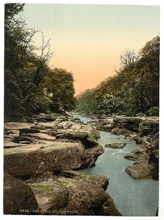 [Woods, the Strid, Bolton Abbey, England]  Although narrow the Boldton Strid's depth is unknown. No one has ever survived after falling in.