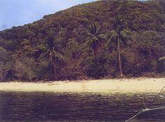 GALOC ISLAND - This virgin island refuge is just 40 minutes by plane from Manila followed by an hour's land trip by van and 45-minute boat ride. The visible corals are well-protected facing the Southwest China Sea. The island is sufficiently equipped with its own water source, good mobile signal, fronting the West side of Busuanga and captures the picturesque views of the Philippine sunset on the sea. Palawan Paradise...ENJOY iT! LIVE iT! OWN iT!!!CALL/TEXT (02)9558407/(0918)2711392