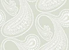 Office: Rajapur (95/2063) - Cole & Son Wallpapers