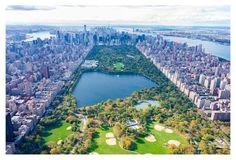"""my friend, Gray's """"Central Park"""" photo - considering for large wall in space."""