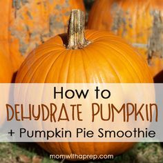 How to Dehydrate Pumpkin + Make Your own Pumpkin Pie Smoothie