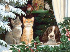 Lang December 2014 | Love Of Cats