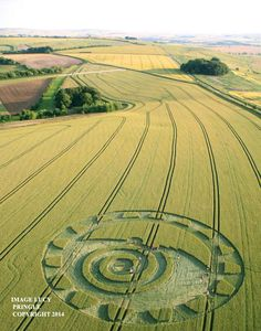 Crop Circle Wiltshire. United Kingdom. Reported 8th July 2014