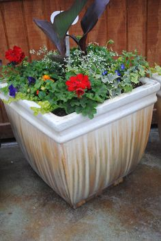 Square Ceramic Planter - Full Sun Exposure - Has a matching planter that is perfect for your front door. Ceramic Planters, Planter Pots, Full Sun Planters, Planting, Ceramics, Home Decor, Ceramic Pots, Ceramica, Plants