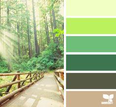Design Seeds - green paint thinking of this for our bedroom third down? Colour Pallette, Color Palate, Colour Schemes, Color Combos, Paint Schemes, Design Seeds, Coordination Des Couleurs, Theme Nature, Color Swatches