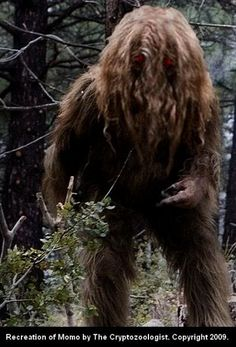 """Momo, a contraction of """"Missouri"""" + """"monster,"""" was a hairy biped seen by several persons in June-August 1972 in the area of Louisiana, Missouri. Its facial features were obscured by hair, and it left both 3-toed and 5-toed footprints."""