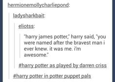 Never seen potter puppet pals but I have seen avpm and yeeessssss