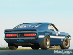69 Shelby Trans Am