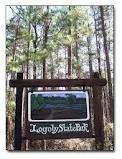 Logoly State Park. Magnolia, AR.