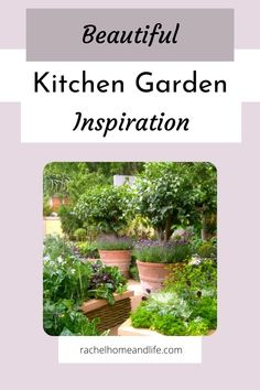 Beautiful kitchen garden ideas, tips and inspiration! #kitchengarden #garden #gardening #gardeningtips Balcony Garden, Herb Garden, Garden Art, Garden Design, Gardening For Beginners, Succulents Garden, Beautiful Kitchens, Garden Planning, Garden Projects