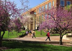 Cato Hall in bloom by UNC Charlotte - Stake Your Claim, via Flickr