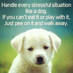I need to learn this lesson...