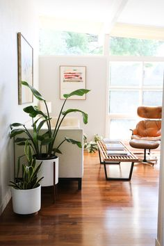 The Case Study Planter is a nod back to pottery design in the mid century modern with clean lines, simplicity, and a fresh, modern look. A cactus or leafy plant suits this stand perfectly, and it can be feat Casas California, California Homes, California Home Decor, Home Living Room, Living Room Decor, Living Spaces, Dining Room, Kitchen Living, Plants In Living Room