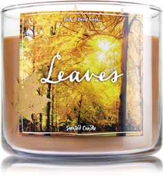 B&B 3 wick candles: Leaves, Fresh Balsam, Champagne Toast, Pumpkin Spice. Really anything that has a spicey, cinnamony scent to it I love to burn in the fall and winter