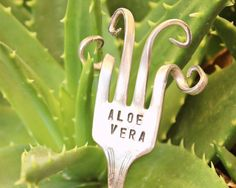 Trenzado tenedor jardín planta hierba marcadores - ALOE VERA - antiguo plateado Garden - trenzado - arte - Etiquetas