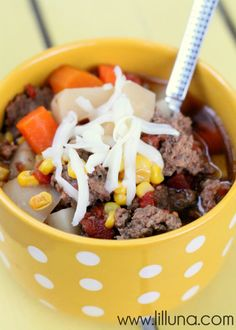 Hamburger Soup Recip