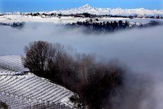 Due giorni e due notti di nevicate, poi è tornato il sole. E nelle terre del Barolo ricoperte di bianco l'atmosfera si è fatta subito magica,