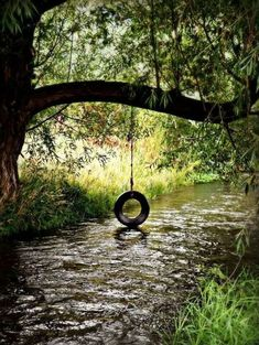 Tire swing over the stream. Tire swing over the stream. Country Charm, Country Life, Country Girls, Country Living, Country Roads, Beautiful World, Beautiful Places, Beautiful Pictures, Peaceful Places