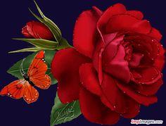 Rózsák - kepeslapneked.lapunk.hu
