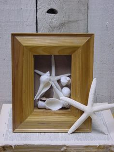 WHITE SEASHELL SHADOWBOX / white fingerling by SophiesCottage, $24.95