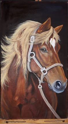 Horse Drawings, Cool Art Drawings, Animal Drawings, Beautiful Horse Pictures, Most Beautiful Horses, Cute Horses, Horses And Dogs, Horse Canvas Painting, Scratchboard Art