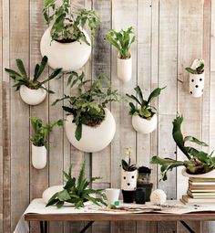 I am obsessed with indoor planters, and these wall planters are just amazing! Perfect for any space to add a little life.