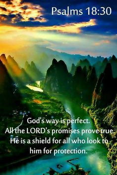 Psalms - God's way is perfect. All the Lord's promises prove true. He is a shield for all who look to him for protection. Biblical Quotes, Religious Quotes, Bible Verses Quotes, Faith Quotes, Heart Quotes, Psalms Quotes, Bible Psalms, Images Bible, Scripture Pictures