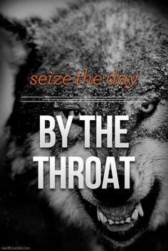 317 Best Wolf quotes images in 2019 | Wolf quotes, Wolf