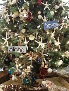 Hawaiian decorated Christmas tree...