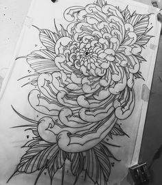 Chrysanthemum I have available to be tattooed. Dm for pricing and availability. Thanks for looking! #springfieldmo #chrysanthemum