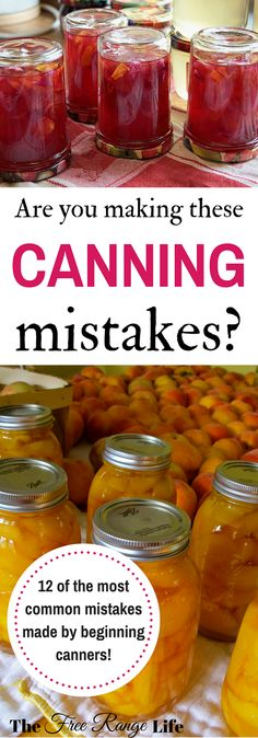 Are You Making These Canning Mistakes? Canning is one of the best ways to preserve your summer produce. Whether you a beginning canner or not, are you making these canning mistakes? Canning Pickles, Canning Tips, Tomato Canning Recipes, Pressure Canning Recipes, Home Canning Recipes, Canning Peaches, Canning Salsa, Canning Food Preservation, Preserving Food