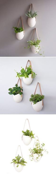 How to Porcelain Planters Set Of 3