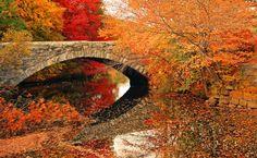 El Blog de La Tabla: Puentes con color de otoño ©John Kapusta