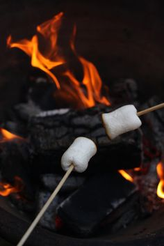 Marshmallows grillen im Frühling