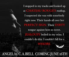 Paranormal Author Catherine Green: Book Review: Angel by C.A. Bell #ASMSG