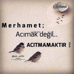 """3,647 Beğenme, 184 Yorum - Instagram'da Aşk Eliftir (@ask._eliftir): """" Ahlakın temeli MERHAMET'tir. . ⚪ ⚫ ⚪ ⚫ #Allah #hzmuhammed #namaz #nasip #huzur #kuran…"""""""