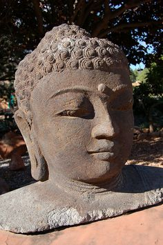 Buddha -  The third eye - the seat of intuition.