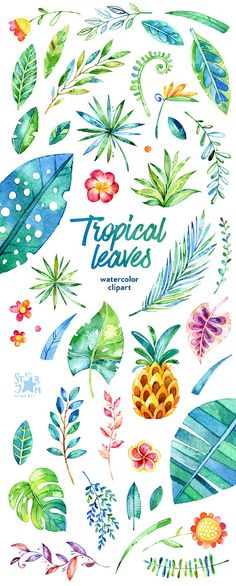 Tropical Leaves. 44 Floral Elements watercolor clip art